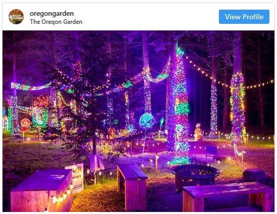 garden of lights display