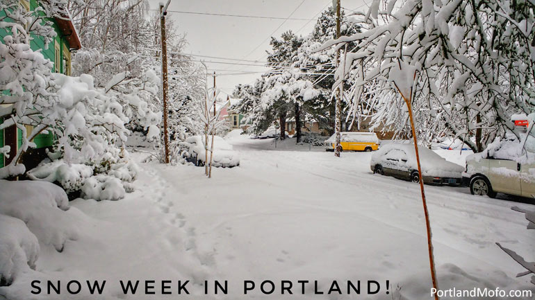 snow in portland